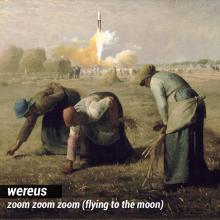 wereus-zoom-px800